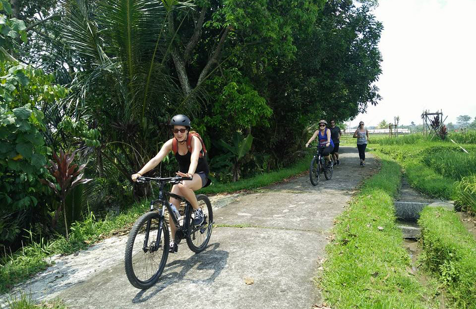 the rice field cycling track - the bali channel