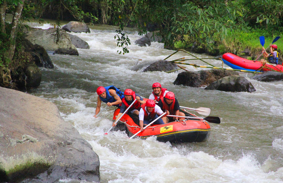 ubud white water rafting - the bali channel