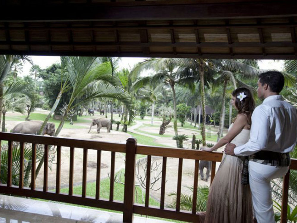 elphant park lodge wedding experiences in bali